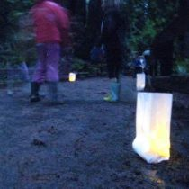Paper lanterns for night walks. Photo by Frog Mom