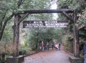 Entrance of Muir Woods. Photo by Frog Mom