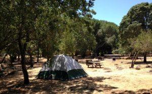 Spring Lake tent 470