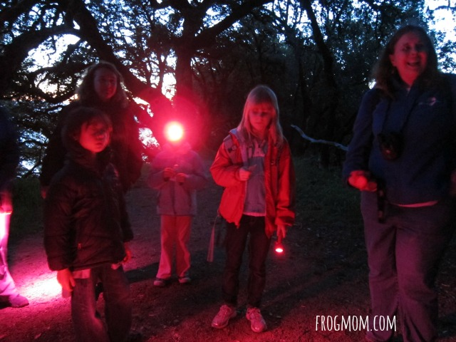 The Stars of Harry Potter Hike - Night Vision