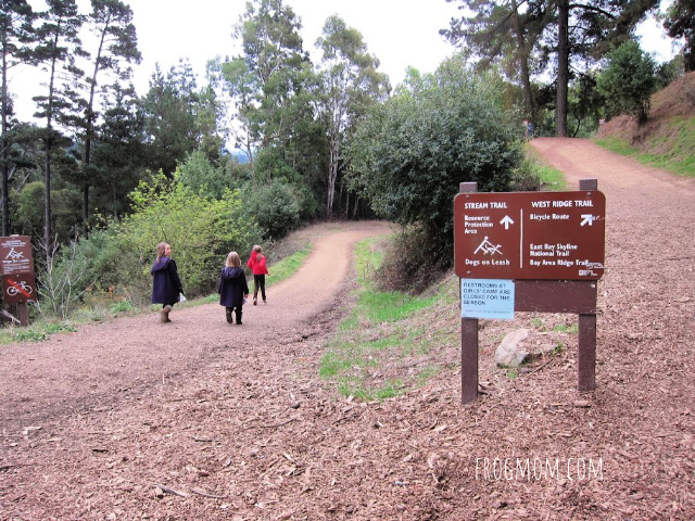 Trailhead at Redwood Regional Park
