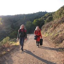 Backpacking on Mount Tam