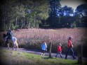 Hikers and horse-riders