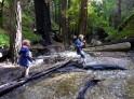 Stepping stones on LImekiln Creek