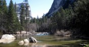 Pierre the Penguin + Yosemite 062