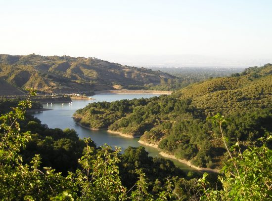 10 Best Bay Area Picnic Spots