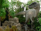Dinosaurs at the Conservatory. Photo by Nina Sazevich