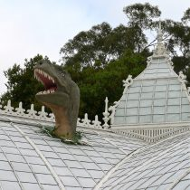 T-Rex Through the Roof. Photo by Nina Sazevich
