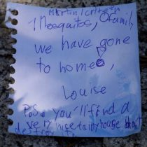 Goodbye mosquitoes note