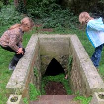 "The ""Treacle Well"""