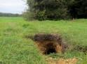 A rabbit hole!
