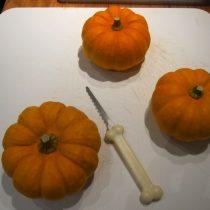 Mini pumpkins ready