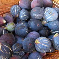Fresh figs for home-made chutney