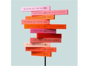 Write nature poems like Roald Dahl - Mesostic poems