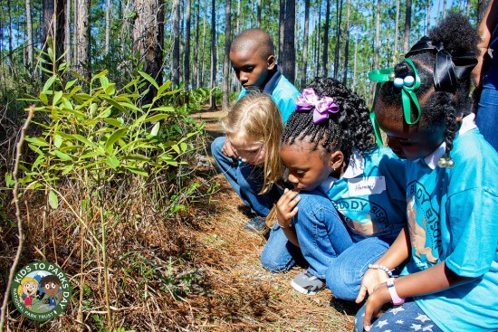 Leave No Trace Principles for Kids to Parks Day