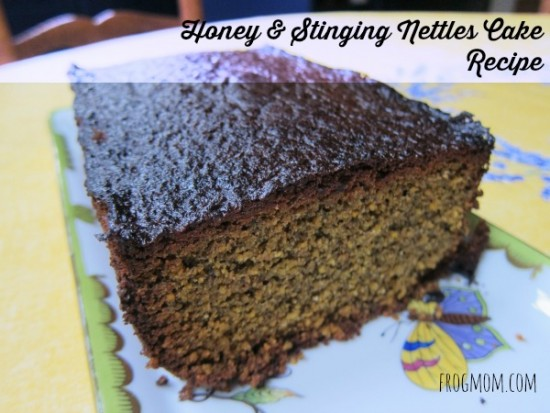 honeystingingnettlescakecover