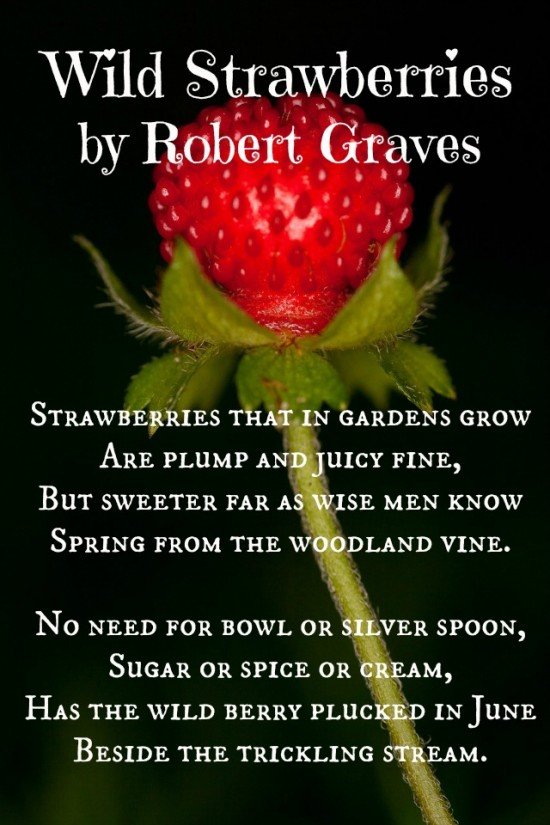 Strawberry Moon Poem