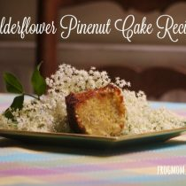 Elderflower Pinenut Cake Recipe