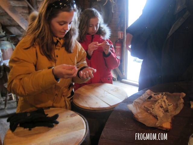 Fish Food Adventures with Kids in Iceland - Fermented Shark