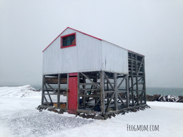 Fish Food Adventures in Iceland - Fish Drying Hut