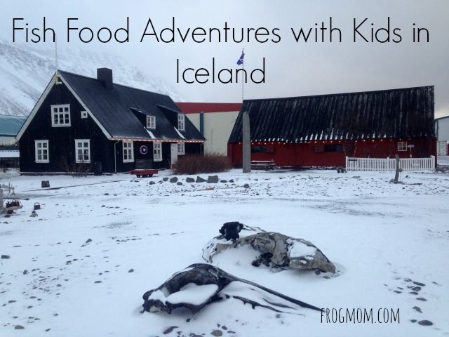 Fish Food Adventures with Kids in Iceland