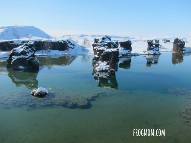 Fish Food Adventures with Kids in Iceland - Myvatn