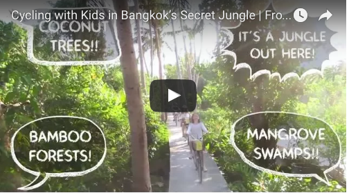 Cycling with Kids in Bangkok's Secret Jungle