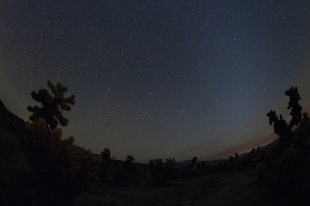 How to Spot Meteors when Camping - Leonids