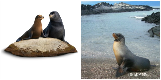 Real Ocean Animals in Finding Dory - Sea Lions