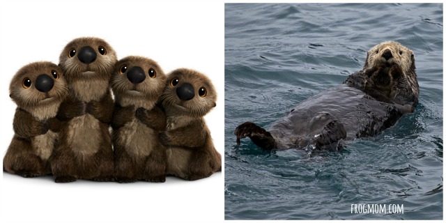 Real Ocean Animals in Finding Dory - Sea Otters