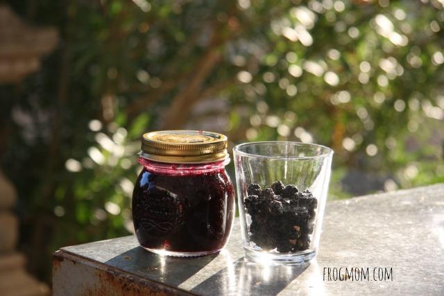 Family Fun Fall Activities - Canning Fruit