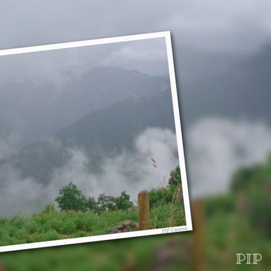 Free photo app - Pip