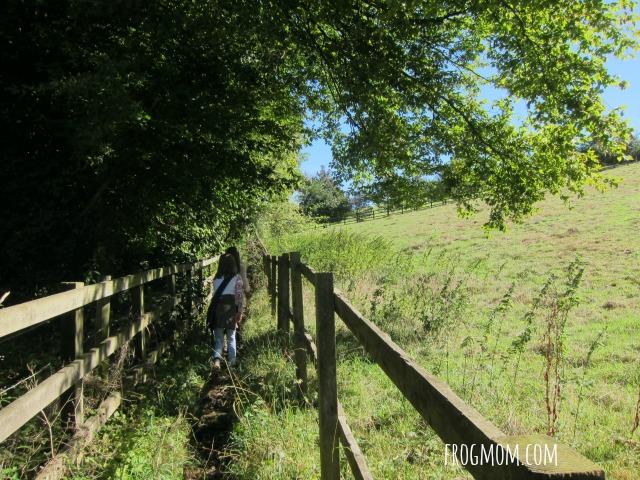 Roald Dahl Walk 7