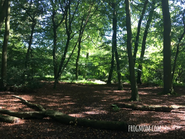Roald Dahl Walk 3
