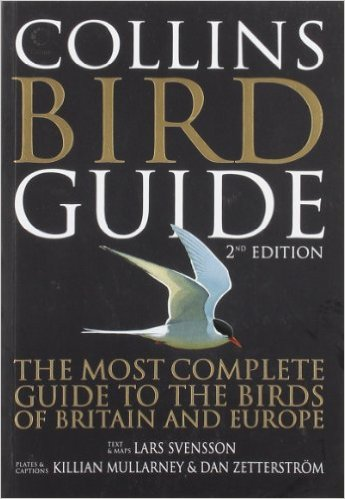 Perfect Gifts for Young Bird Lovers