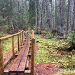 Lahemaa National Park | Explore Estonia's Wild Side