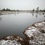 Soomaa National Park | Bogshoeing and Canoeing in Estonia