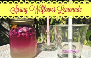 Spring Wildflower Lemonade Recipe