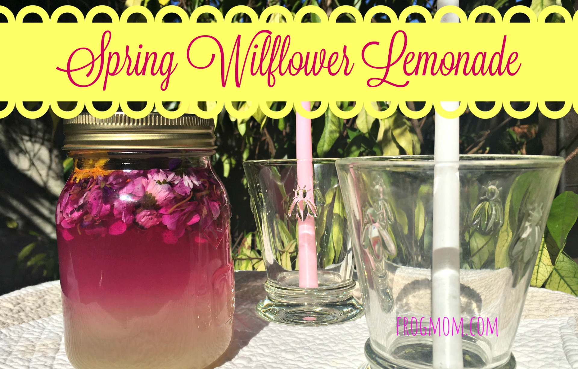 Spring Wildflower Lemonade Recipe