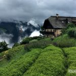 Visit Switzerland's Garden in the Mountains