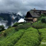 Visit Switzerland's Garden in the Mountains