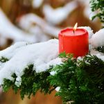 Outdoors Advent Calendar #9: Candles & Honey Bees in Winter