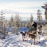 Outdoors Advent Calendar #10: Sleds & Winter Sleigh Rides
