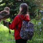 The Secret Owl Garden: Where Kids Can Touch Owls & Learn About Them