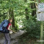 Forclaz Trek 700 50+10 Women's Mountain Backpack Review