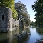 Swimming around the Moat: Bishop's Palace in Wells