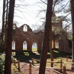 Like a Sunday in an English Garden: Painshill Park