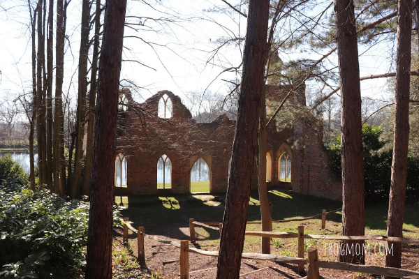 Painshill Park - Ruined Abbey