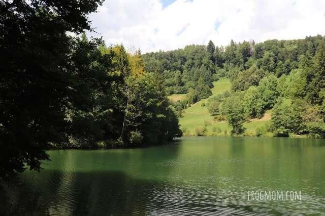 Swiss arboretum