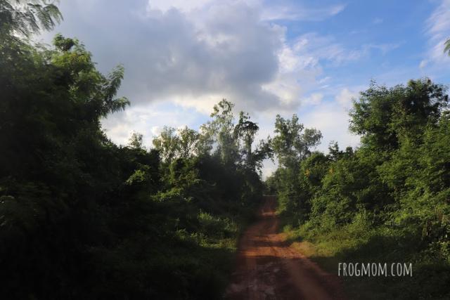 Main track, Kui Buri National Park, Thailand